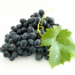 Blue grape cluster — Stock Photo #4017137