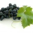 Blue grape cluster — Stock Photo #4017145