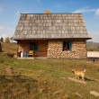Simple rural house -  