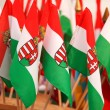 Stock Photo: Hungariflags