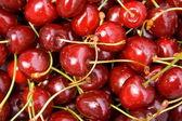 Cherry background — Stock Photo