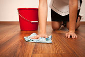 地板清洁剂 — 图库照片