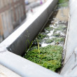 Stock Photo: Gutter