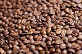 Grãos de café — Foto Stock
