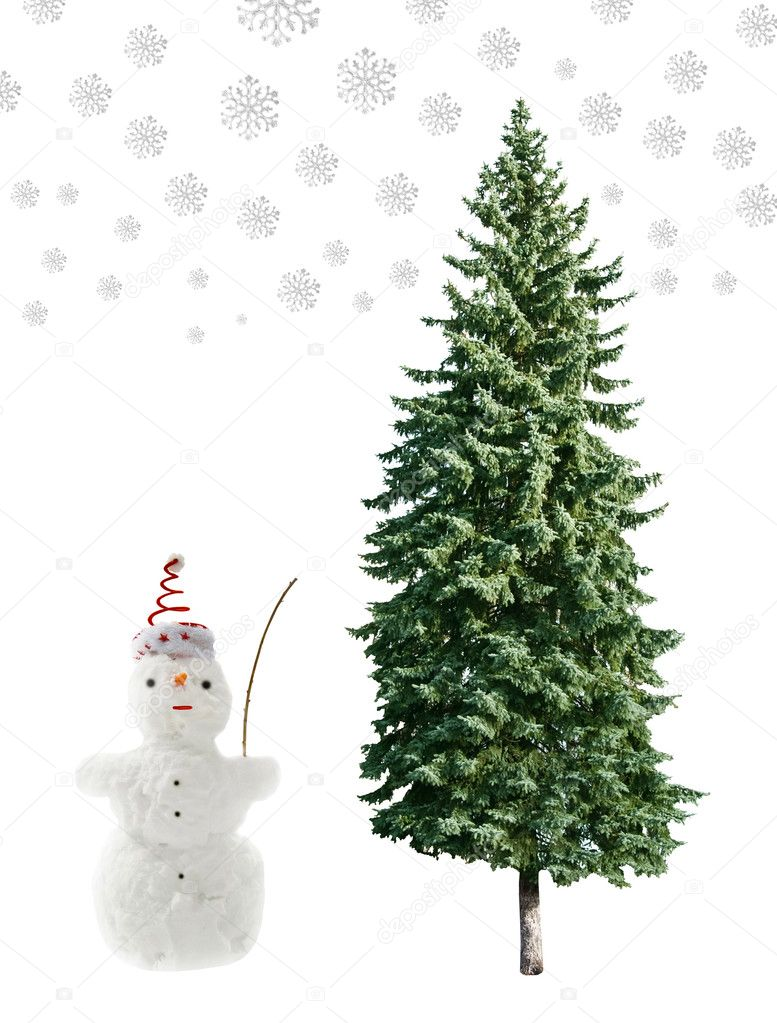 Snowman and pine tree is isolated on a white background  Stock Photo #4975960