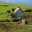 Cute irish cottage by ocefor rental — Foto de stock #3957768