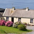 Cute irish cottage by the ocean for rental — Stock Photo