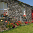 Scenic rural irish cottage with bicycle and roses - Foto de Stock