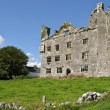 Ancient irish castle on west coast ireland - Foto de Stock