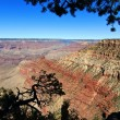 Grand canyon national park landscape, arizona, usa — Stock Photo