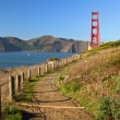 Golden gate bridge in sfrancisco, usa — Foto de stock #3959745
