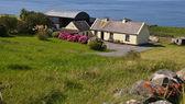 Joli cottage irlandais face à l'océan pour location — Photo