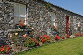Scenic rural irish cottage with bicycle and roses — Foto de Stock