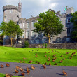 Stock Photo: Capture of vibrant irish castle in county clare