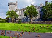 Capture de vibrant château irlandais dans le comté de clare — Photo