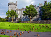Capture of vibrant irish castle in county clare — Stock Photo