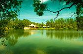 Sessiz gölü — Stok fotoğraf