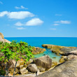 Tropical coast - Stock Photo