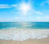 Paysage marin tropical. — Photo