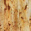 Stock Photo: Rusted metallic background texture