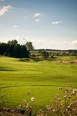 Buraco em um campo de golfe — Foto Stock