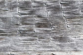 Wood Texture from a Log Cabin — Stockfoto