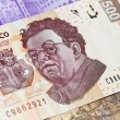 Stock Photo: New mexic500 bill Diego Rivera