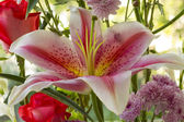 Lillies and Other Flowers — Stock Photo