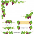 Decorative grape illustration — 图库矢量图片