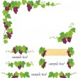 Decorative grape illustration — Image vectorielle