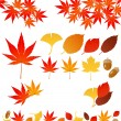 Autumn leaves — Stock Vector #3975898