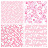 Cherry blossom pattern — Stock Photo