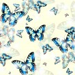 Seamless butterfly background — Stock Vector