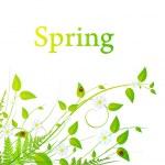 Spring floral frame — Stock Vector