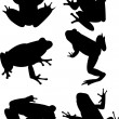 Stock Vector: Frogs