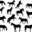 Royalty-Free Stock Vector Image: Horses