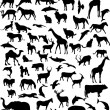 Royalty-Free Stock Vector Image: Animals