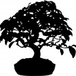 Stock Vector: Bonsai