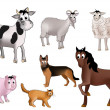 domestic animals&quot — Stock Vector