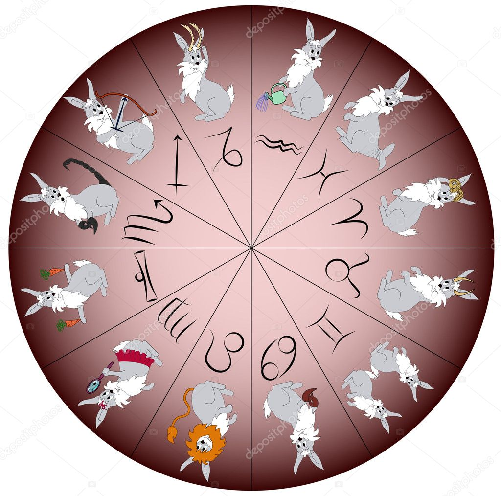 Rabbit - symbol of year 2011 - charactered as Zodiac signs. Vector illustration. — Stock Vector #5291537