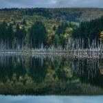 Beautiful autumn lake view — Stock Photo