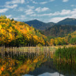 Beautiful autumn lake view — Stock Photo #3960908