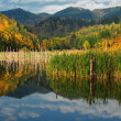 Beautiful autumn lake view — Stock Photo