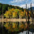 Beautiful autumn lake view - Stock Photo