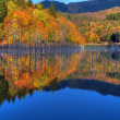 Stock Photo: Beautiful autumn lake view