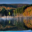Beautiful autumn lake view — Stock Photo #3961022