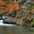 Autumn waterfall - Stock Photo