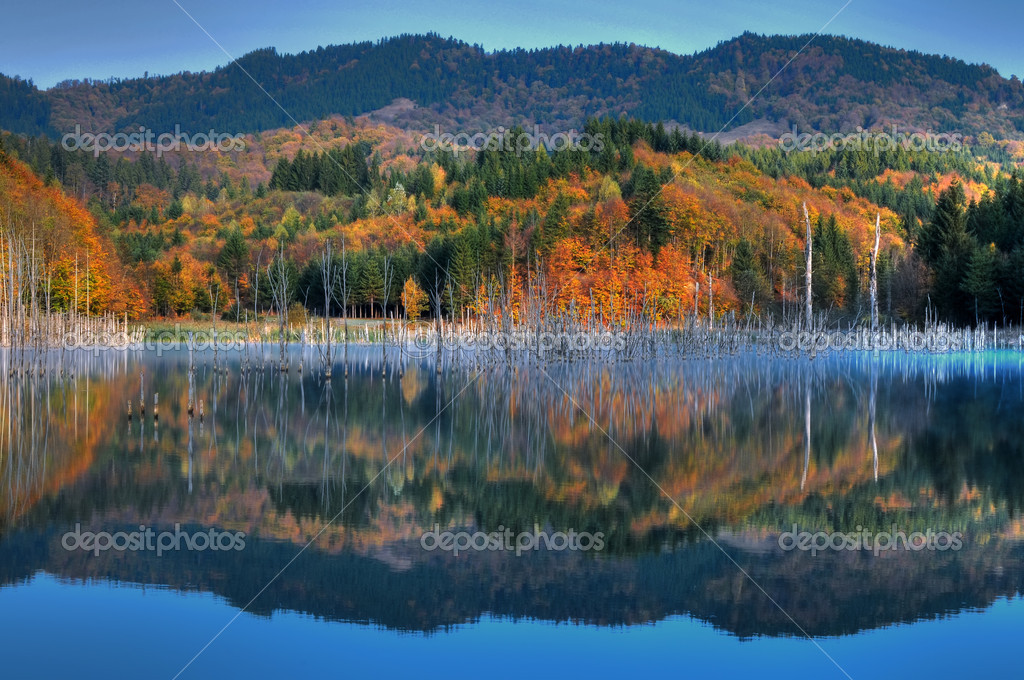 Beautiful autumn lake view  — Stock Photo #3961031