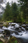 Alpine river — Стоковое фото