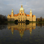 Neues Rathaus — Stock Photo